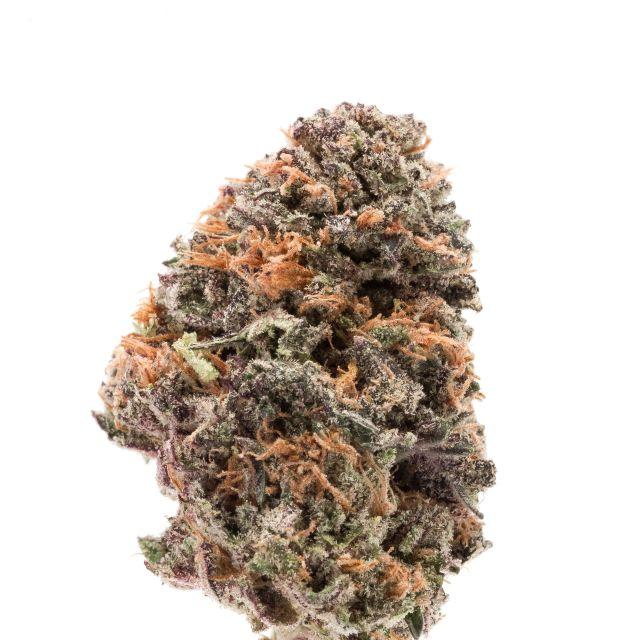 Afghani Granddaddy -  Afdaddy| cannabisstores