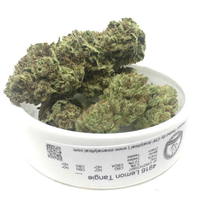 LEMON TANGIE| cannabisstores