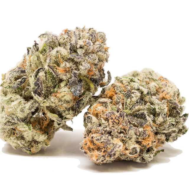 PURPLE PUNCH| cannabisstores