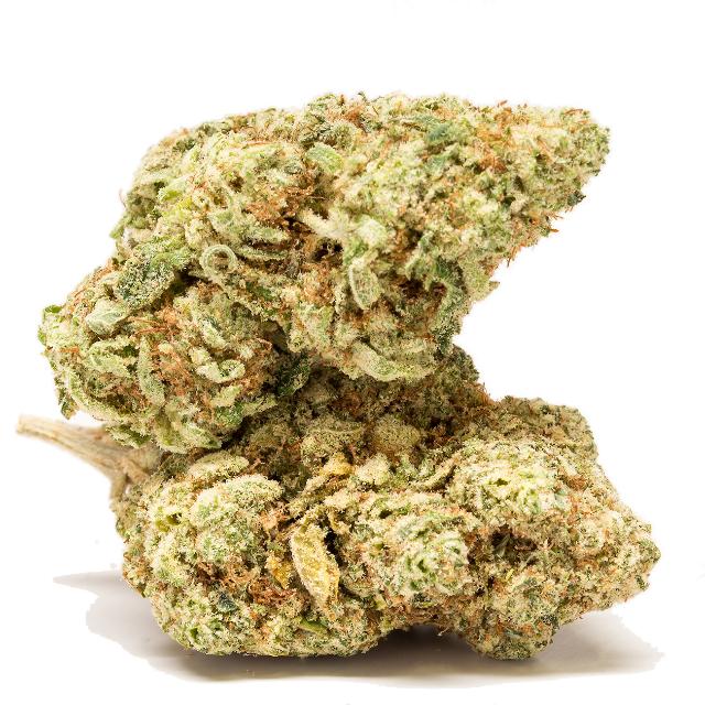 GORILLA GLUE| cannabisstores