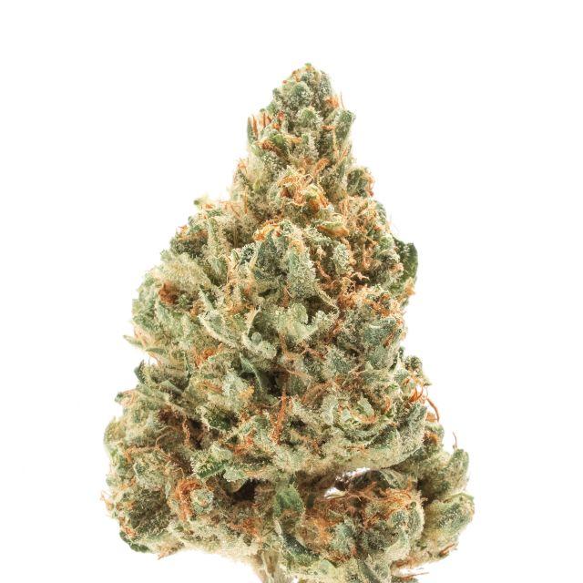 Goji OG - Cali Exotix| cannabisstores