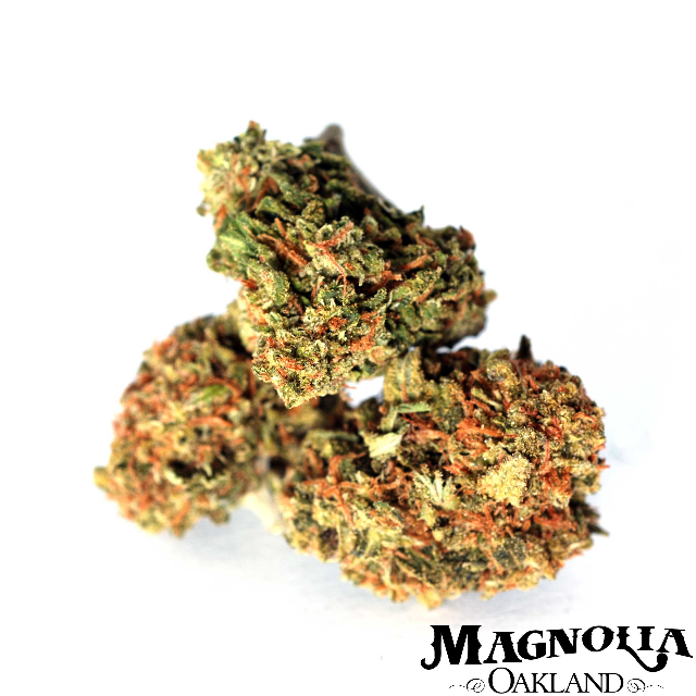 CHIESEL EIGHTH| cannabisstores