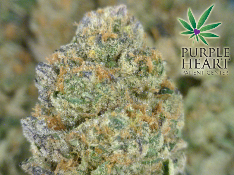 Cookie Frost| cannabisstores