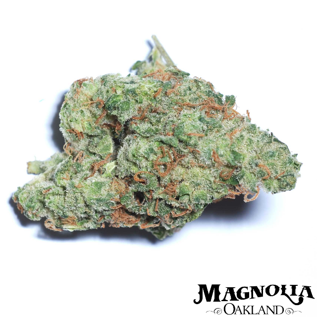 JET FUEL EIGHTH| cannabisstores