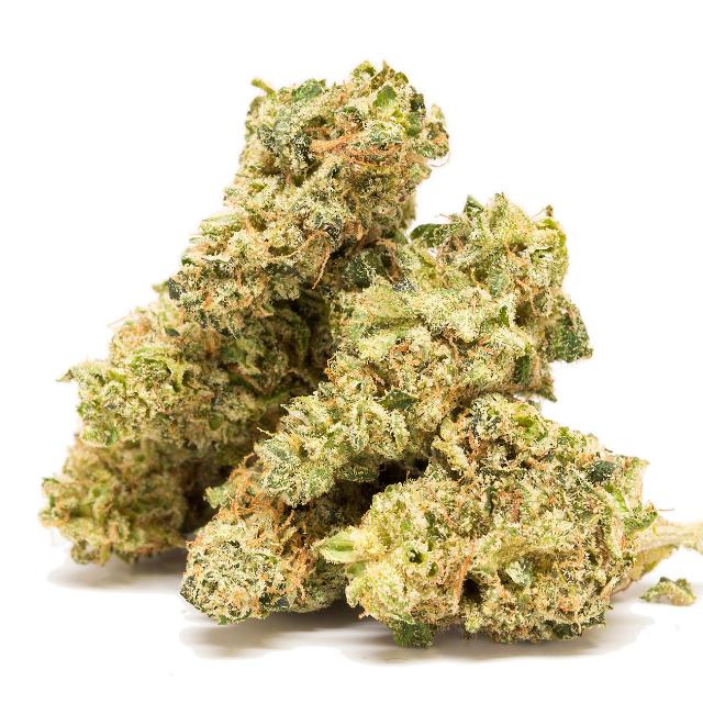 ROLLINS| cannabisstores