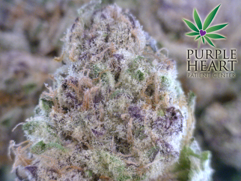 Sticky Punch| cannabisstores