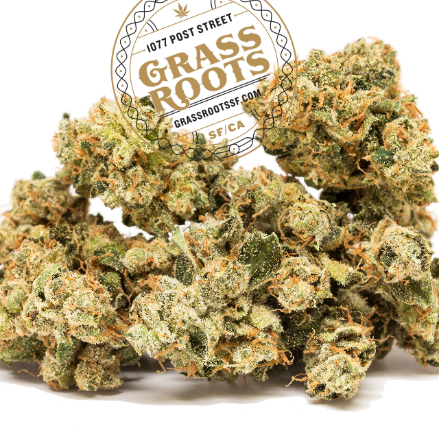 PINEAPPLE SAGE| cannabisstores