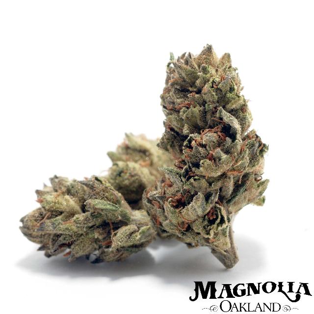 cannabisstores
