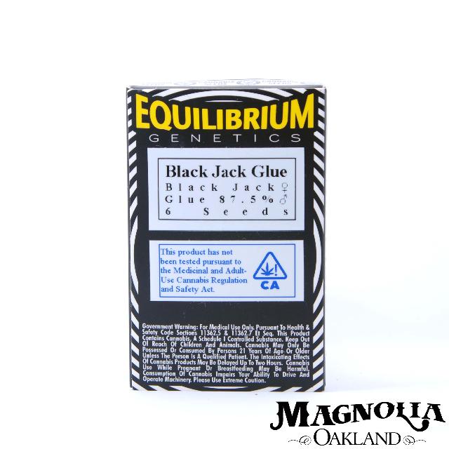 BLACK JACK GLUE SEEDS 6PK| cannabisstores