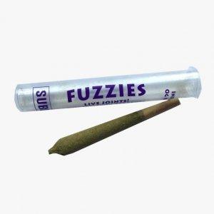 Fuzzie's Indica