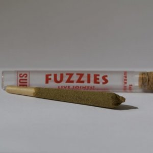 Fuzzies Sativa