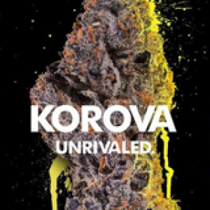 ALIEN BODY DOUBLE (1G) - KOROVA