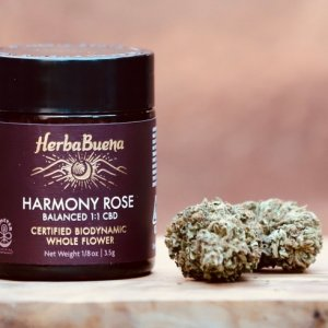 Harmony Rose CBD