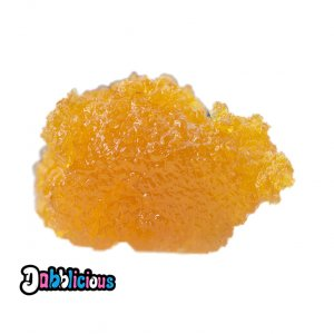 LS X BS Caviar